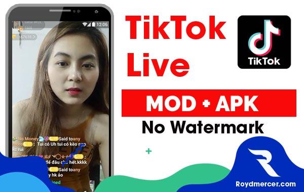 Download Tiktok Mod Apk
